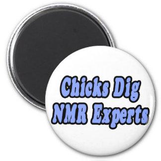 De kuikens graven NMR Deskundigen Koelkast Magneten