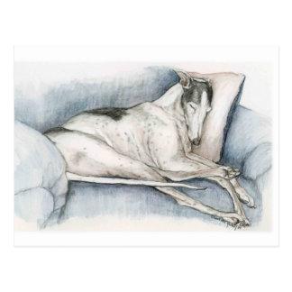 De Kunst Poscard van de Hond van de Windhond van Briefkaart