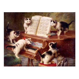 De Kunst van de kat De overweging van het Katje
