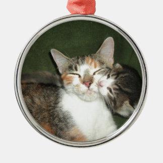 De Kus van het katje Zilverkleurig Rond Ornament