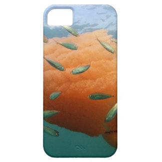 De Kwal van het vat zwemt met Makreel Barely There iPhone 5 Hoesje