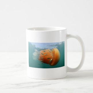 De Kwal van het vat zwemt met Makreel Koffiemok