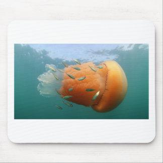 De Kwal van het vat zwemt met Makreel Muismat