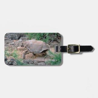 De Labels van de Bagage van de Schildpad van de