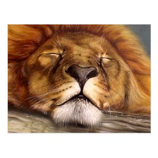 De Leeuw van de slaap Briefkaart