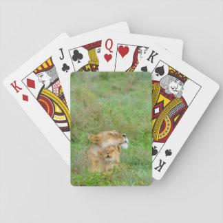 De Leeuwin van de Liefde van de moeder & de Speelkaarten