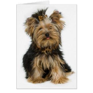 De Lege Kaart van de Hond van het Puppy van