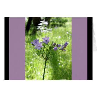 De Lege Kaart van de Nota paarse Wildflower