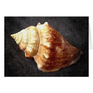 De Lege Kaart van Shell van het zee
