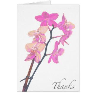 De lege Roze Orchidee dankt u kaardt Kaart