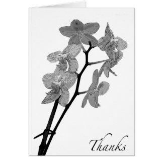 De lege Zwart-witte Orchidee dankt u kaardt Kaart