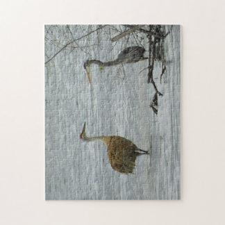 De lente: De Vrienden van watervogels Legpuzzel