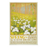 De lente in de Duinen Poster
