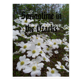 De lente in Ozarks Briefkaart