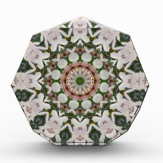 De lente komt 04.2, bloem-Mandala tot bloei Acryl Prijs