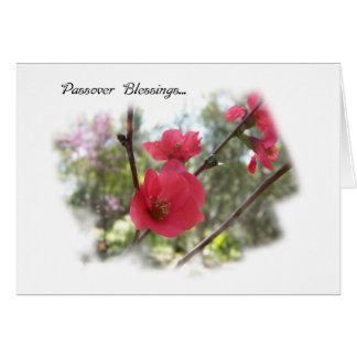 De lente komt het Wenskaart van de Zegen van de