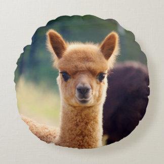 De leuke Alpaca van het Baby om Hoofdkussen Rond Kussen