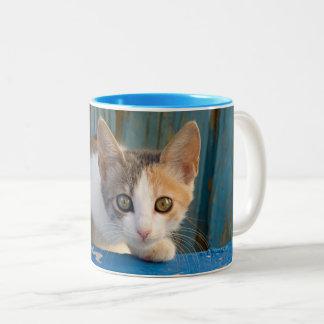 De leuke Foto van de Ogen van het Katje van de Kat Tweekleurige Koffiemok
