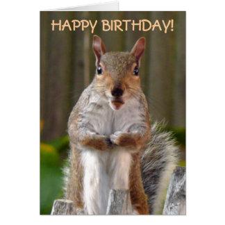 De leuke Gelukkige Verjaardag van de Eekhoorn Kaart