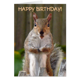 De leuke Gelukkige Verjaardag van de Eekhoorn Wenskaart