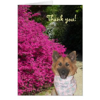 De leuke Hond dankt u kaardt Kaart