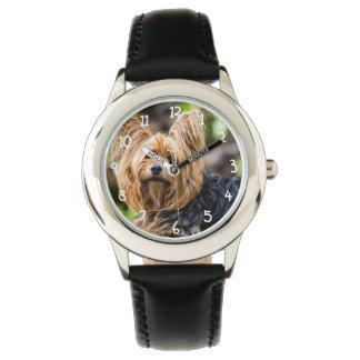 De leuke Hond van Yorkshire Terrier in tuin Horloges