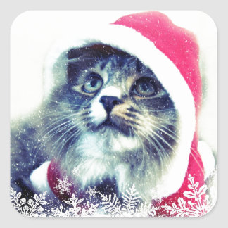 De leuke Kat van Kerstmis Vierkante Sticker