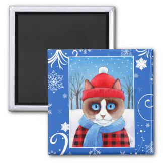 De leuke kat van Ragdoll van de Sneeuwschoen, de Magneet