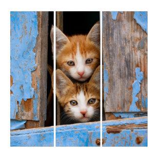De leuke Katjes van de Kat in een Blauw Vintage Drieluik