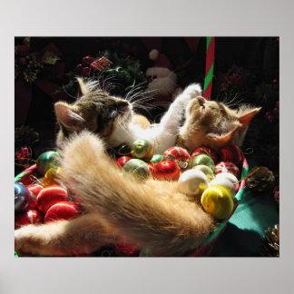 De leuke Katjes van Kerstmis in Liefde op de Poster