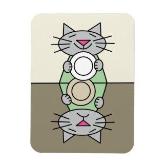 De leuke magneet van de kattenafwasmachine