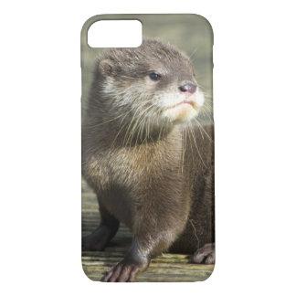 De leuke Otter van het Baby iPhone 8/7 Hoesje