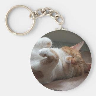 De leuke slaap Keychain van de Kat Sleutelhanger
