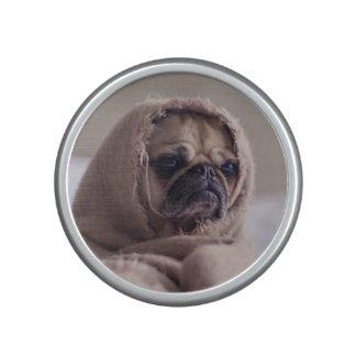 De leuke spreker van het Close-up van de Hond Bluetooth Luidspreker