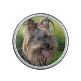 De leuke spreker van het Close-up van de Hond Bluetooth Speaker
