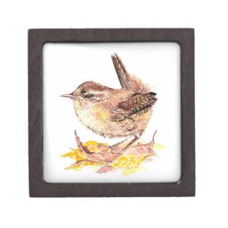 De leuke Vogel van het Winterkoninkje van de Water Premium Decoratie Doosje