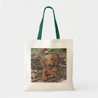 De leuke Zak van de Hond, tekkel, doxie Draagtas