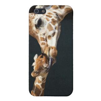 De Liefde van de giraf iPhone 5 Hoesje