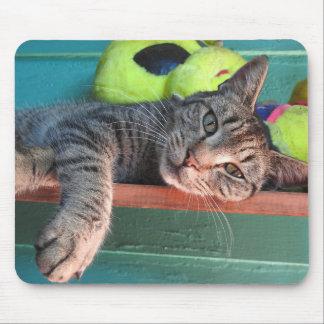 De Liefde van de kat Muismatten