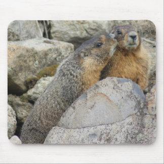 De Liefde van de marmot Muismat
