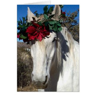 De Liefde van het paard Briefkaarten 0