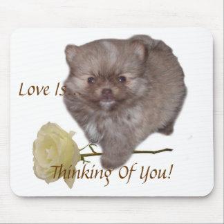 De Liefde van Zeus Pomeranian van bloemen denkt aa Muismat