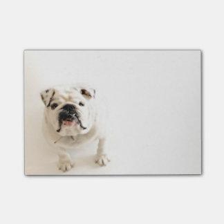 De loyale Witte Foto van de Buldog Post-it® Notes