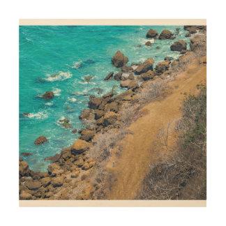 De lucht Vreedzame OceaanKustlijn Puerto Lopez van Hout Afdruk