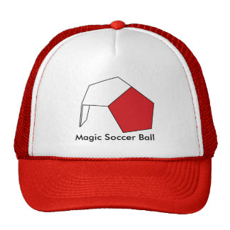 De magische Bal van het Voetbal Petten
