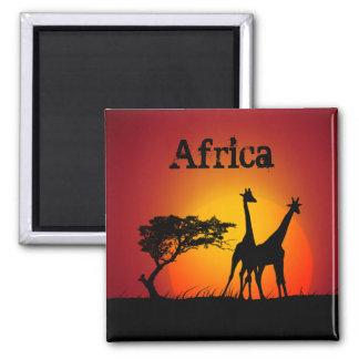 De magneet van Afrika