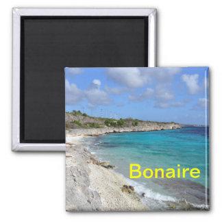 De magneet van Bonaire