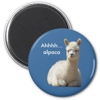 De Magneet van de Alpaca van Ahhhh