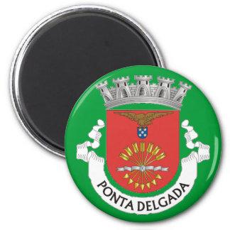 De Magneet van de Ijskast van Delgada* de Azoren