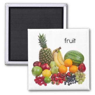 De Magneet van de Ijskast van het fruit